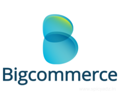 Bigcommerce Product Data Entry Services
