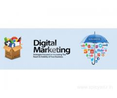 Top 10 Digital marketing Service Provider in Delhi |MCM Infotech