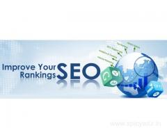 MCM Infotech provides best SMO & SEO Services in Delhi