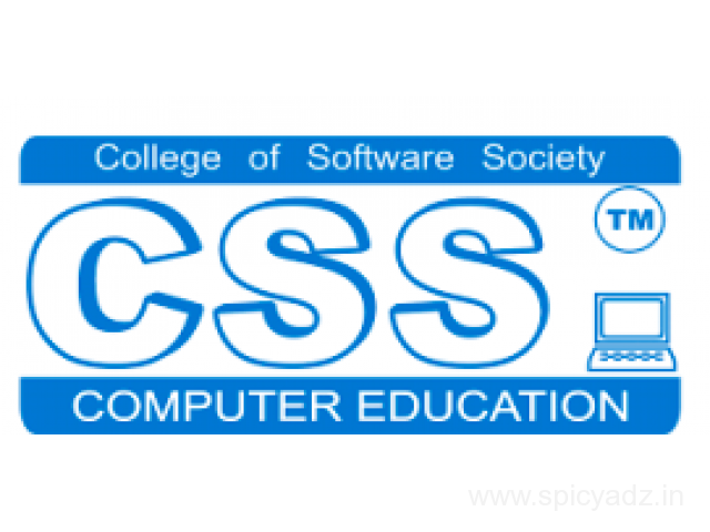 CSS Franchisee / CSS Computer
