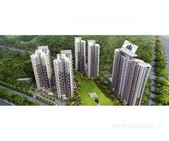 Society Flats for Rent in Dwarka