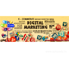 Digital Marketing Services| Digital Marketing Company in Delhi Across India