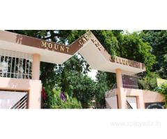 Direct Admission In Mount Carmel College(Bangalore) BCA