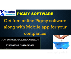 Pigmy collection app,pigmy deposit interest calculator and debt collection software