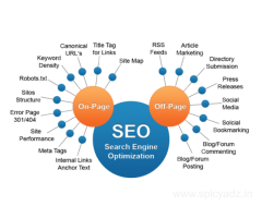 Seo Services In Delhi | Seo Services Company In Delhi - SMARTDIGITALWORK