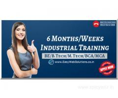 Digital Marketing Training in Panchkula