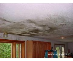 VS Waterproofing Contractors -	Dampness in buildings in Bangalore
