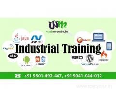 Oniline Training and Internship providing Company In Chandigarh and Mohali