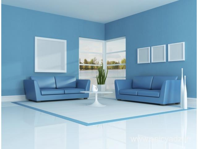 VS Painting Contractors -  Professional painting contractor |home painting company
