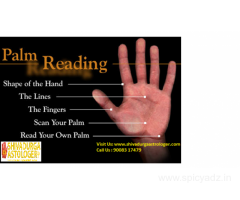 Top Palm Readers in Bangalore