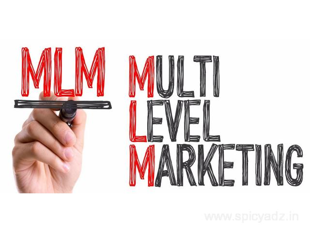 MLM Software Development Company Provides Top Most services in Chennai - 1