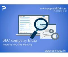 Best SEO Company in Udaipur India
