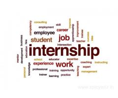 Free Web Development internship program in hyderabad