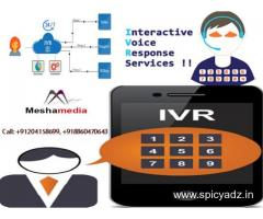 Excellent IVR Service in Delhi by Mesha Media at an Affordable Cost