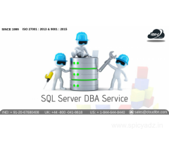 SQL server DBA Service Providers in Pune