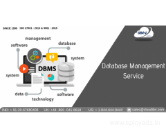 Database Management Services in Pune