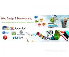 Web Design and CMS Development Company in Aurangabad, India