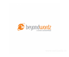 BeyondWordz Website Translation Services