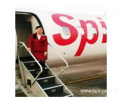 Air hostess training in chennai, best air hostess institute & courses