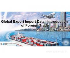 Are You Looking for an Authentic Import Export Data Provider?