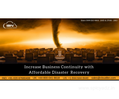 disaster recovery consultant in pune