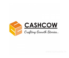 CFO Services, Outsourced CFO Services | Cashcow Consulting