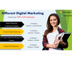 Digital Marketing Course with 100% Job Guarantee