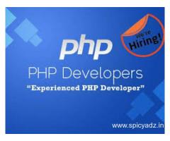 PHP Developer and WEB Developer in Hyderabad