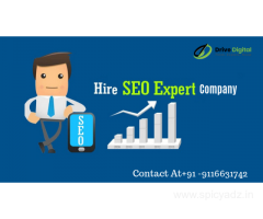 Hire the SEO Expert Company for the best results and performance