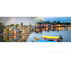 Local taxi service in Srinagar
