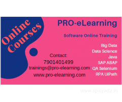 Online Courses - PRO-eLearning | Software Online Training