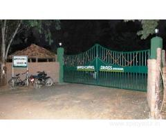 Get Whispering Grass in,Bandhavgarh with Class Accommodation.