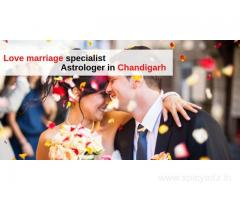 Best Love Astrologer in Chandigarh: Love marriage specialist Astrologer