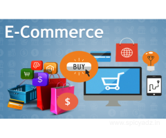 Best Ecommerce Website Development Company India
