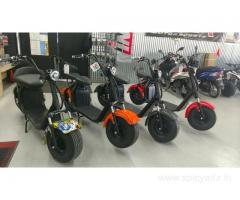 High quality, powerful, durable, affordable, and fast Citycoco electric scooter