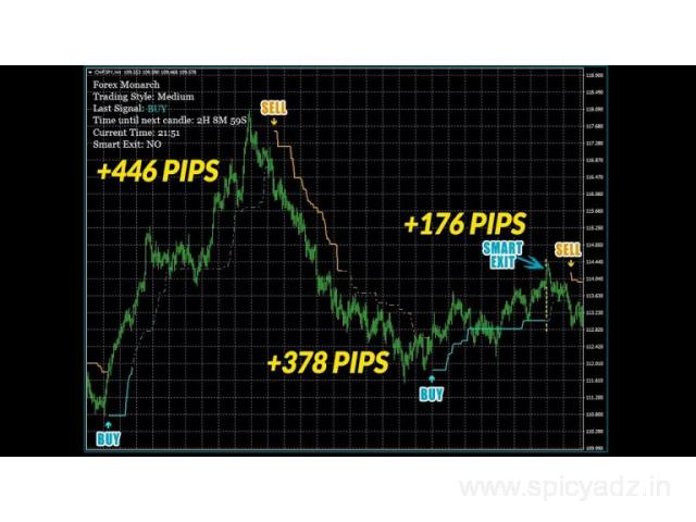Forex Megadroid - Why is it Effective in the Forex Market? - 1