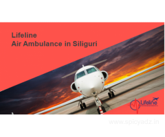 Lifeline Air Ambulance in Siliguri is Cost-effective and Deliver Budget-friendly Services.