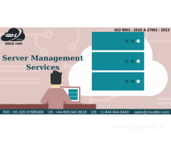 server management companies in pune