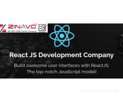 React Js Website Development Services