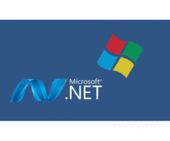 Want To Be A Developer, Learn Dot Net