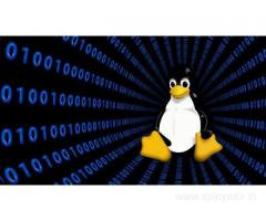 Be A Linux Expert