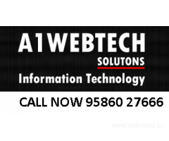 Top Cheap Cost SEO Services India A1webtech SEM SEO PPC Digital Solution