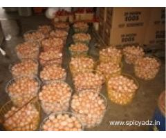 egg ready for sale very healthy