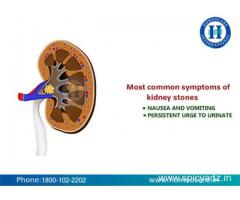 Kidney Stones Treatment in Homeopathy - Homeocare International
