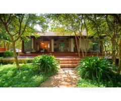 Get The Windflower Tusker Trails Resort in,Bandipur with Class Accommodation.