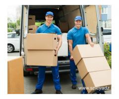 Movers and Packers in Pandav Nagar Delhi