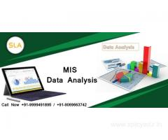 Join MIS Training Course in Delhi at SLA Consultants India