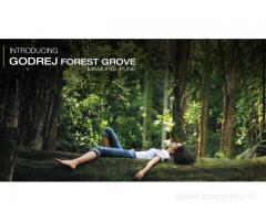 Godrej Forest Grove- Exclusive offers 2/3BHK Residences in Pune