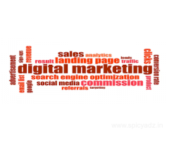 Learn Advance Digital Marketing Course in Delhi with Experts