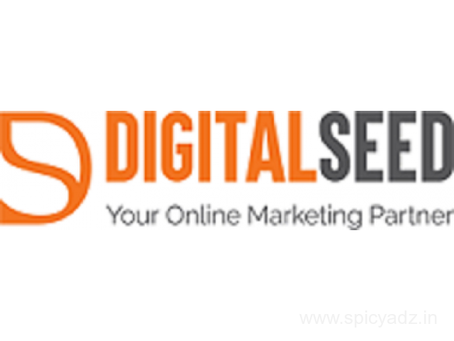 Digital Marketing Company in Pune | Website Design Company in Pune | Digitalseed Agency, India - 1